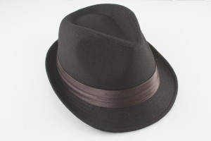 Forever Cool Fedora