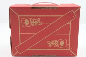 Kiwi Crate Handmade Valentines