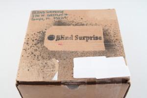 Blind Surprise