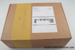 Citrus Lane March 2014 2 Year Old Boy Subscription Box Review