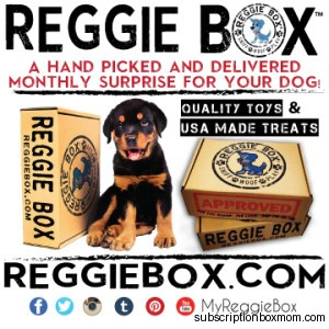 Reggie Box BFF Edition
