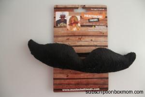 Mustache Friends
