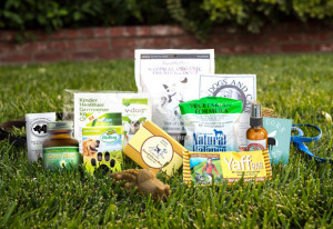 Vegan Cuts Dog Lover Box