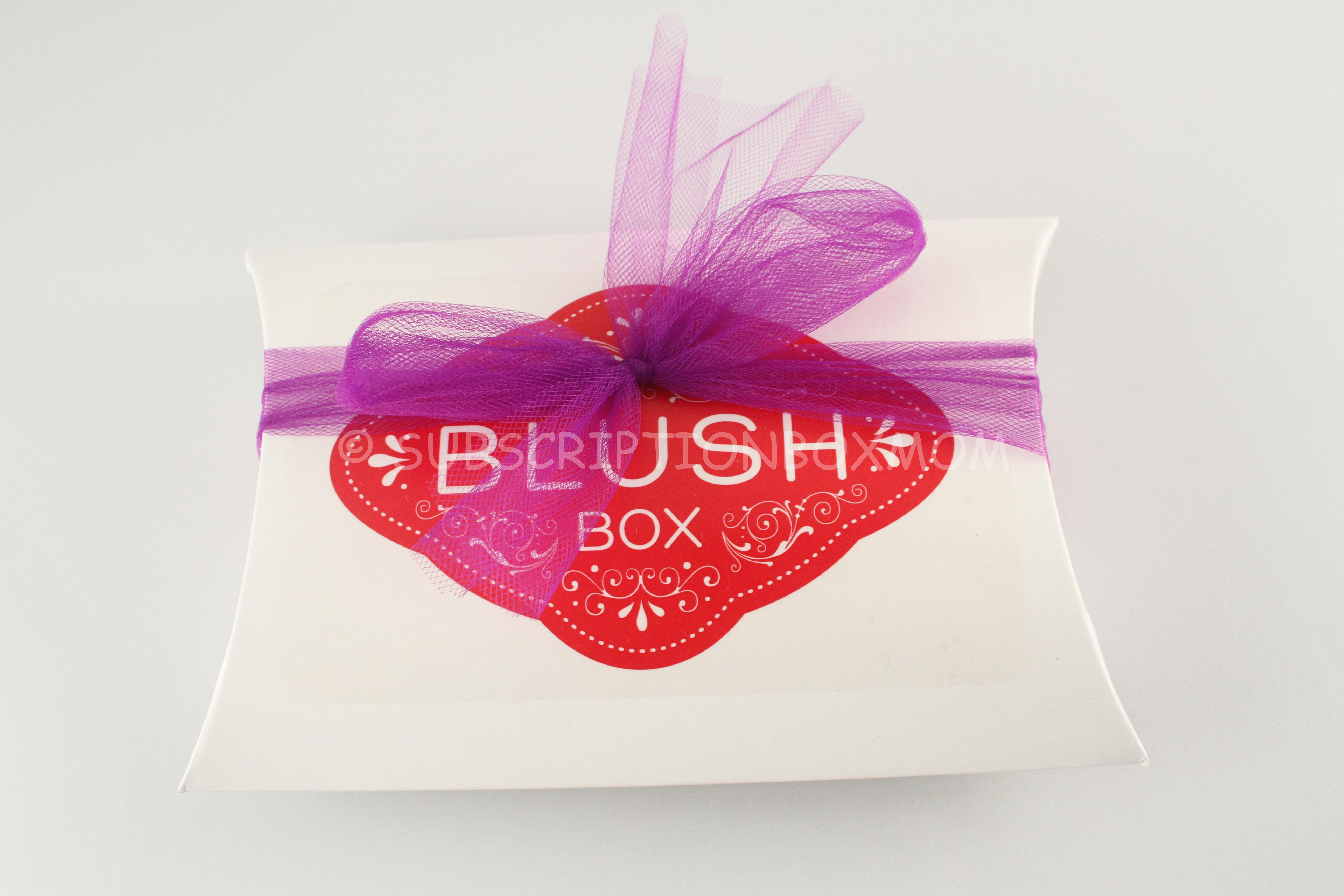 June 2014 BlushBox Panty Review + Coupon + Lingerie Subscription ...