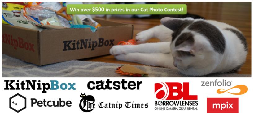 KitNipBox Cat Photo Contest