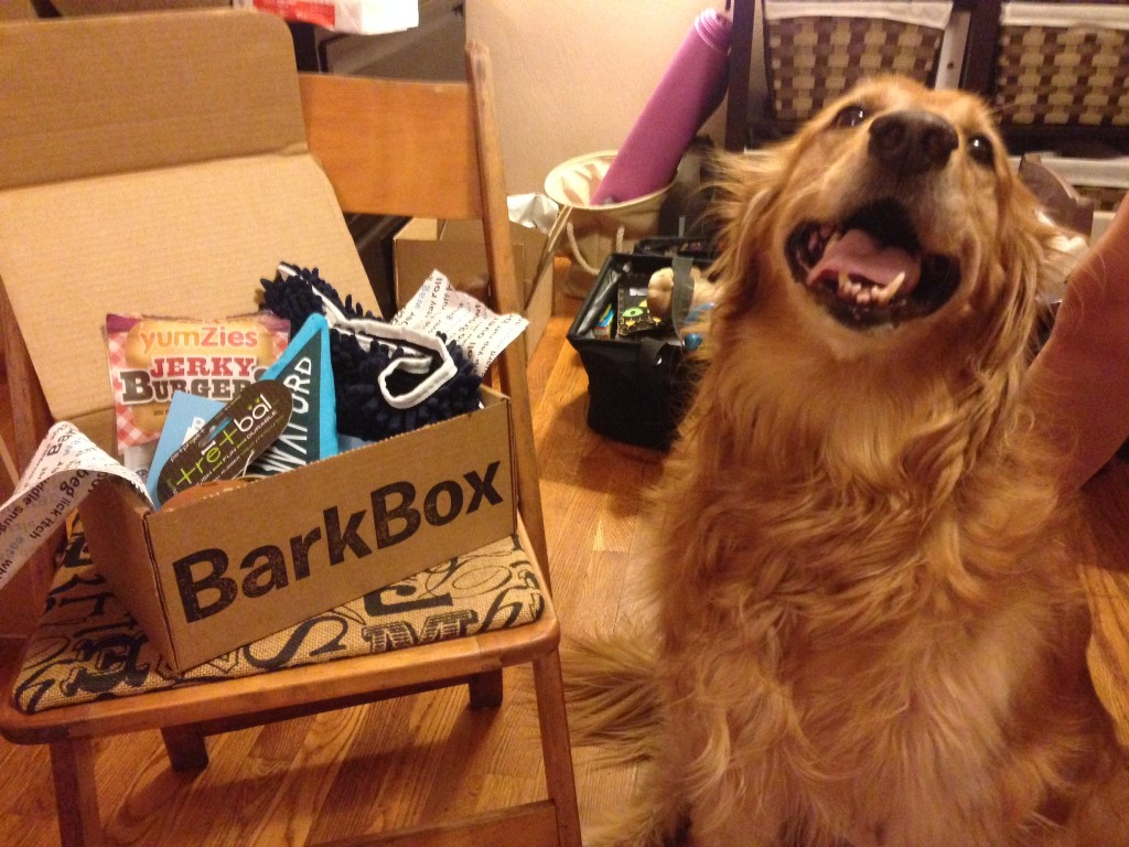 September 2014 BarkBox Review