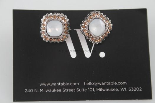 Genna Earrings Silver