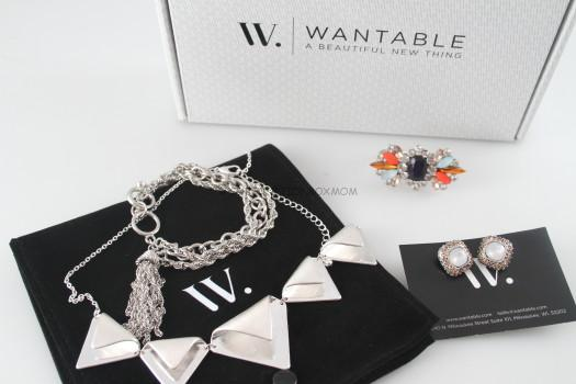 March 2015 Wantable Accessories Review