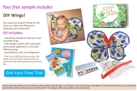 FREE Green Kid Crafts Trial Box - DIY Butterfly Wings