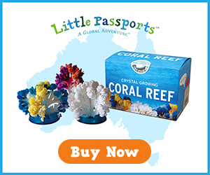 CoralReef_Banner300X250