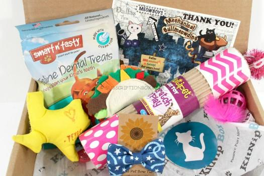 KitNipBox September 2015 Review