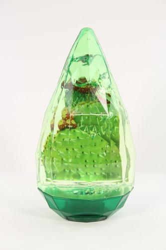 SNP Cactus 90% Soothing Gel