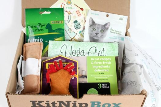KitNipBox January 2016 Review