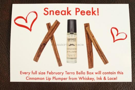 Cinnamon Lip Plumper from Whiskey, Ink & Lace.