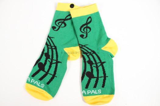 Music Socks