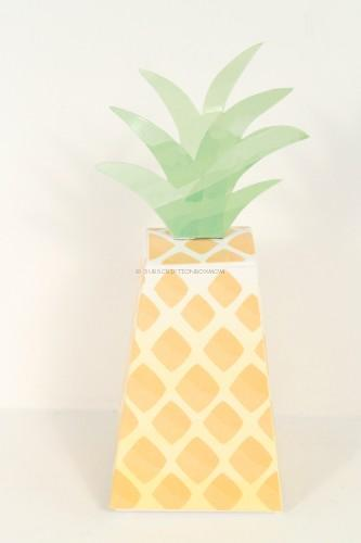 pineapple package