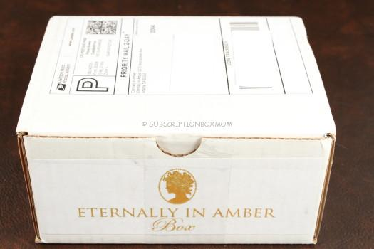 Eternally in Amber Box