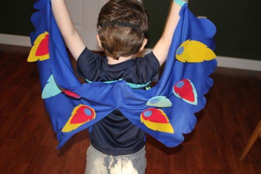 bird cape