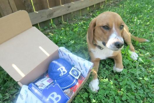 BarkBox April 2016 Review