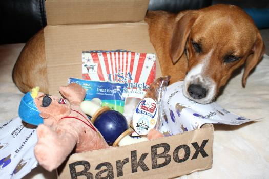 BarkBox July 2016 Review