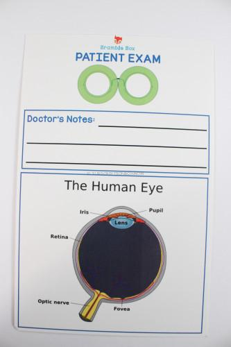 Diagram of the Human Eye