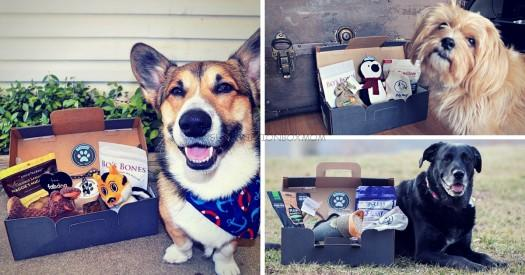 Pupjoy Coupon: Save $10 or Free Box with Subscription