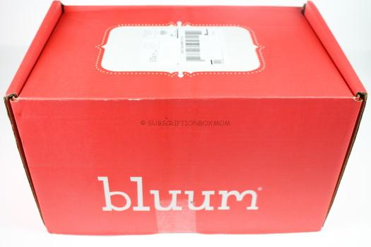 Bluum September 2016 Review