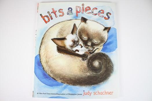 Bits & Pieces Hardcover by Judy Schachner