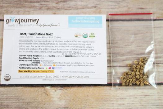 Beet, 'Touchstone Gold'