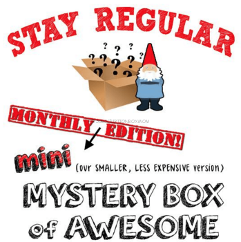 Mini Mystery Box of Awesome October 2016 Spoiler
