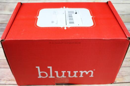 Bluum November 2016 Review