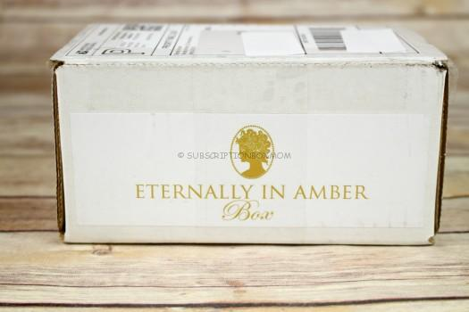 Eternally in Amber November 2016 Review