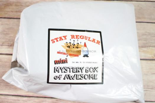 Mini Mystery Box of Awesome December 2016 Review