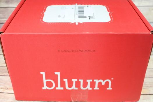 Bluum February 2017 Review