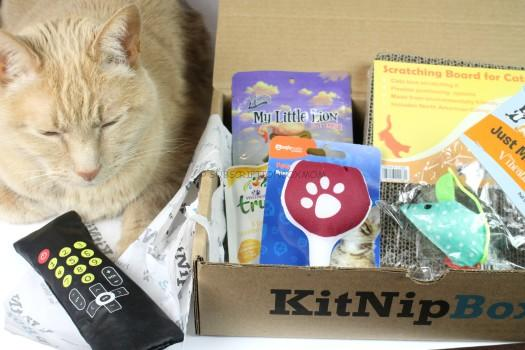 KitNipBox February 2017 Review