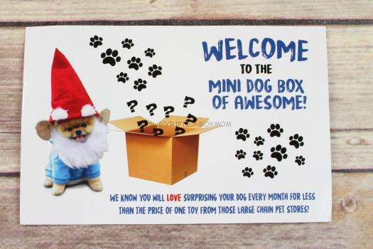 Mini Monthly Dog Box of Awesome  sc 1 st  Subscription Box Mom & Mini Monthly Dog Box of Awesome March 2017 Review - Only $10 ... Aboutintivar.Com