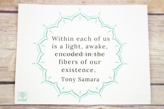 BuddhiBox Quote