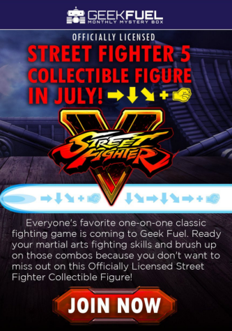 Street Fighter 5 Collectible Figure.