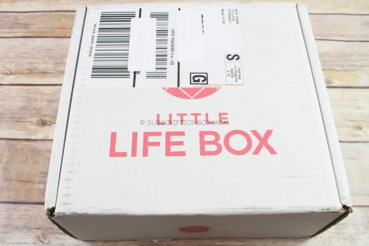 Little Life Box Fall 2017 Review