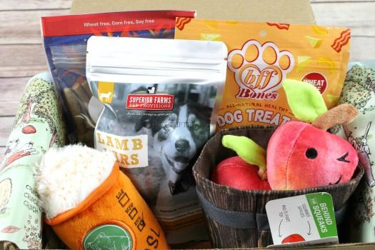 BarkBox November 2017 Review
