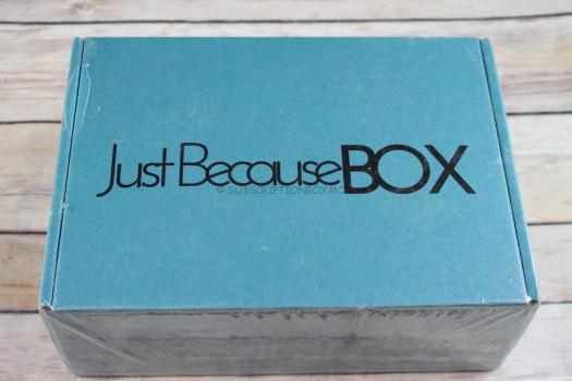 Just Because Box December 2017 Review