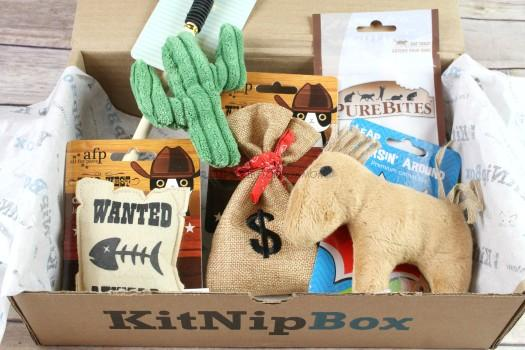 KitNipBox January 2018 Cat Subscription Box Review