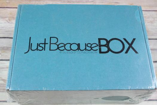 Just Because Box January 2018 Review