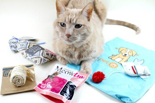 Pet Treater Cat Pack November 2018 Review