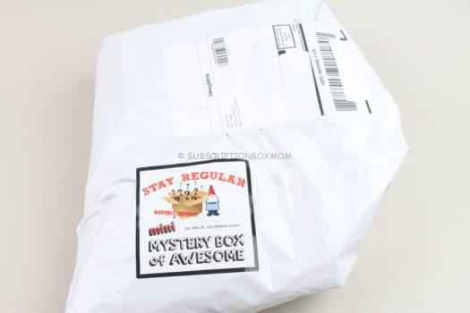 Mini Mystery Box of Awesome January 2020 Review