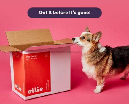 Ollie July 2020 Coupon Code