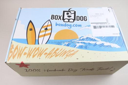 BoxDog Summer 2020 Review