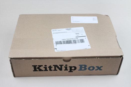 KitNipBox January 2021 Cat Box Review